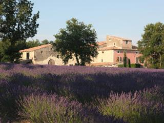 DOMAINE DE LA BARBEIRASSE - Maison de la Source - Cereste vacation rentals