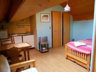 studio Meribel Les Allues - Meribel vacation rentals