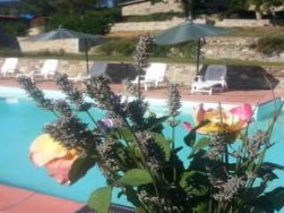 Romena Country Resort - Pratovecchio vacation rentals