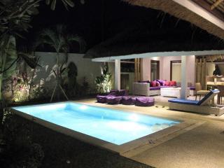 Brand new Villa 2 Bedroom With Cozy architecture, Seminyak - Kuta vacation rentals