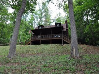 Blue Ridge Getaway- Enjoy the Serenity of  the NC Mountains in Rocking Chairs or the Hot Tub! - Candler vacation rentals