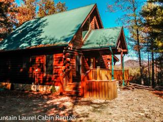 *NEW LISTING* BUCKSKIN BLUFF- 3BR/3BA CABIN WITH BEAUTIFUL MOUNTAIN VIEWS, 3 KING SUITES, WIFI, HOT TUB, SAT TV, JETTED TUBS, SL - Blue Ridge vacation rentals