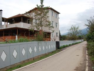 Bright 7 bedroom Sapanca Villa with Internet Access - Sapanca vacation rentals