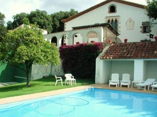 CM344 -  Total relax with fantastic forest views - Arenys de Munt vacation rentals