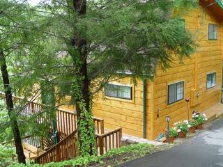 ALPINE VIEW - Gatlinburg vacation rentals