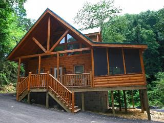 A PLAYERS PARADISE - Sevierville vacation rentals