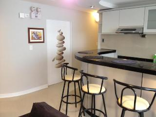 Excellent Apartment In Miraflores - Lima vacation rentals