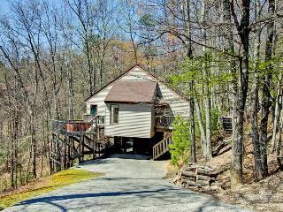 A BEAR'S PARADISE - Gatlinburg vacation rentals