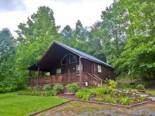 AT WITTS INN - Sevierville vacation rentals