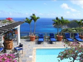 Villa Kercliff - Breathtaking Villa Atop Pointe - Colombier vacation rentals