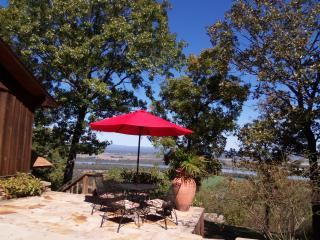 Edgehouse on Petit Jean Mtn.- AR River view!! - Morrilton vacation rentals