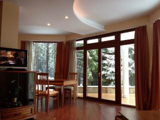 Vacation Rental in Pamporovo