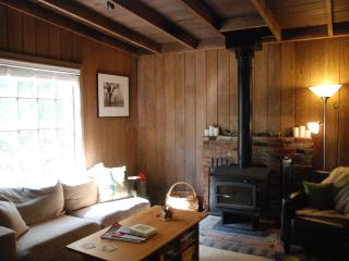 Rustic Cabin in the heart of Alexander Valley - Geyserville vacation rentals