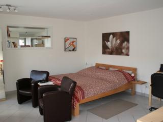Ferienwohnung/Business Apartment #1, Fam. Schwarze - Grenzach-Wyhlen vacation rentals