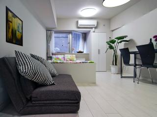 Central-walk To Roppongi, Shibuya 107 - Minato vacation rentals