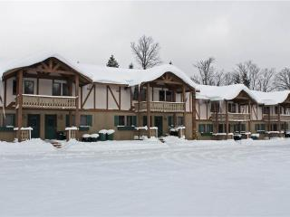 Alpen Villa 5 - Upper Peninsula Michigan vacation rentals