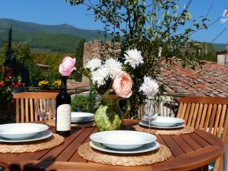 Authentic Tuscany - Charming  - Casa Due Torri - Pisa vacation rentals
