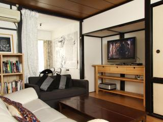 BIG House 3 Bedrooms Roppongi Shibuya - Tokyo vacation rentals