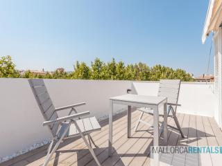 Incredible Penthouse Apartment Palma De Mallorca - Palma de Mallorca vacation rentals