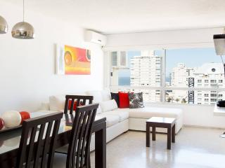 Comfortable 3 Bedroom Apartment in Punta del Este - La Barra vacation rentals