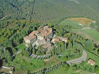 castello in Chianti ginestra - Gaiole in Chianti vacation rentals