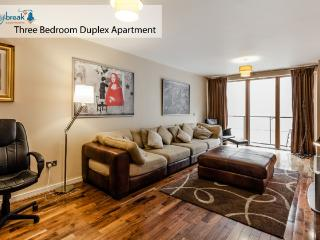 Grand Canal Three Bedroom Duplex Apartment - Dublin vacation rentals