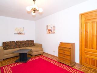 2room apartment  center of Minsk. Metro Pl. Lenina - Minsk vacation rentals