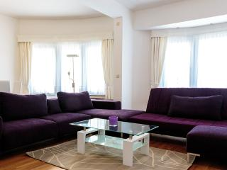 Bright Condo with Central Heating and Television - Etterbeek vacation rentals