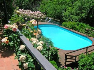 Il Giardino - Rignano sull'Arno vacation rentals
