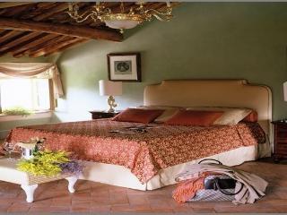 Villa Fatori - TFR149 - Pisa vacation rentals