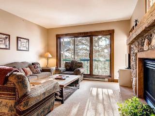 Borders Lodge - Upper 108 - Beaver Creek vacation rentals