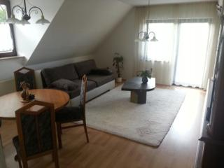 Vacation Apartment in Weimar - 904 sqft, clean, hygienic, welcoming (# 5420) - Weimar vacation rentals