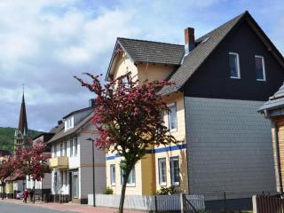 Vacation Apartment in Bad Harzburg - 614 sqft, far sighted, close to town, silent (# 5465) - Bad Harzburg vacation rentals