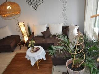 Vacation Apartment in Bad Harzburg - 6953 sqft, exotic, convenient, friendly (# 5468) - Wolfenbüttel vacation rentals