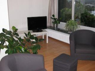 Vacation Apartment in Wetter (Ruhr) - 969 sqft, spectacular view, comfortable, friendly (# 5487) - Witten vacation rentals