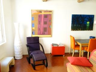 Air Conditioned in Historic Centre of Nice - Nice vacation rentals
