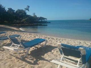 The Big Blue Sea, beach front, ocean view, wifi - Negril vacation rentals