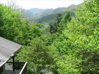 Mountain Views; Minutes from Historic Downtown Way - Waynesville vacation rentals