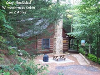 WIL-DEER-NESS CABIN-Hot Tub*Firepit*Secluded*River - West Jefferson vacation rentals