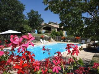 Gite/Cottage de charme en Haute Provence - Sisteron vacation rentals