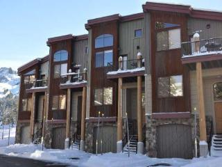The Sentinels #7 - gorgeous two bedroom town home - Kirkwood vacation rentals