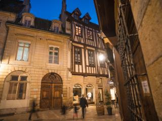 Appartement dans Hôtel de Bretagne Dijon - Dijon vacation rentals