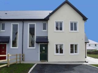 4 bedroom House with Dishwasher in Valentia Island - Valentia Island vacation rentals