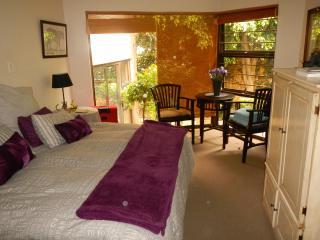 1 x King Size/Twin Room and 1 x Double room - Johannesburg vacation rentals