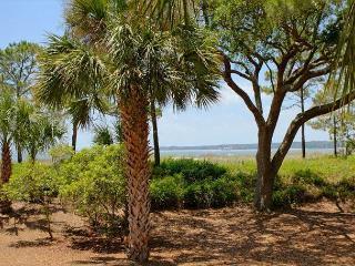 1412 S. Beach Villa-Beachfront & Beautiful-Quick Walk to S. Beach Marina - Hilton Head vacation rentals