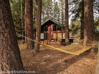 River's Run on the Wenatchee River, Hot Tub, Wi-Fi - Leavenworth vacation rentals
