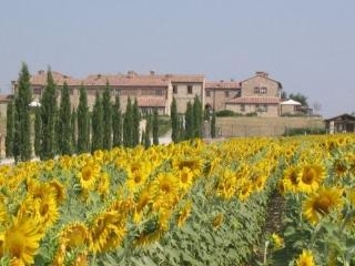 country resort in the Crete Senesi area T6-B - Asciano vacation rentals