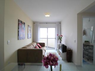 ★Franco SP 53★ - Sao Paulo vacation rentals