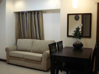 City center condo MRT EDSA Quezon City - Visayas vacation rentals