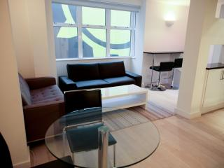 Piccadilly Circus & Covent Garden 2 Bed 2 Bath - London vacation rentals